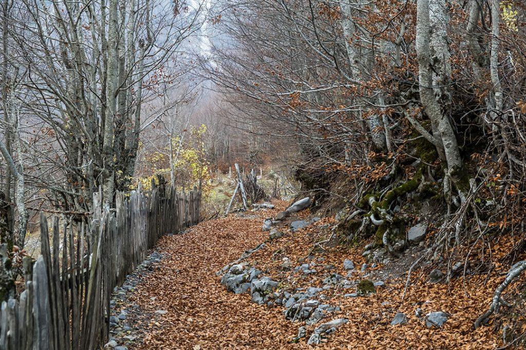valbone vallery hike