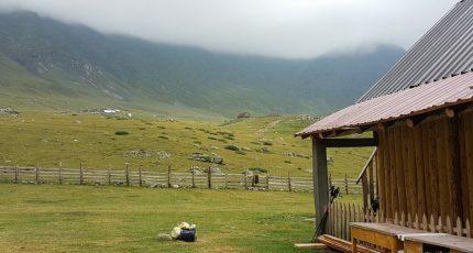 Doberdol field albanian alps